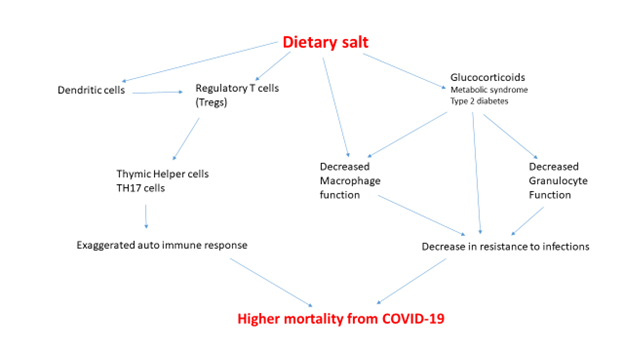 Salt, COVID-19 and Mortality in Black America